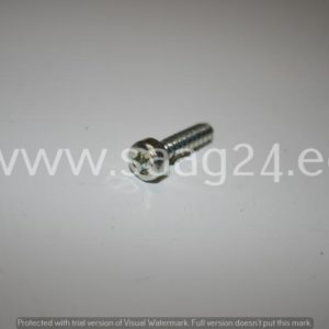 Kruvi IS-P5x20 MS171