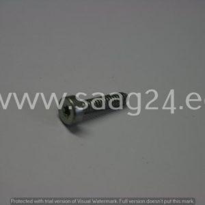 Reduktori kinnituspolt FS450