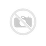 Juhtplaat .325 1,3 33 cm/13″ (laminate), ECHO